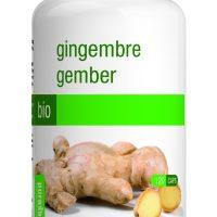 ginger front
